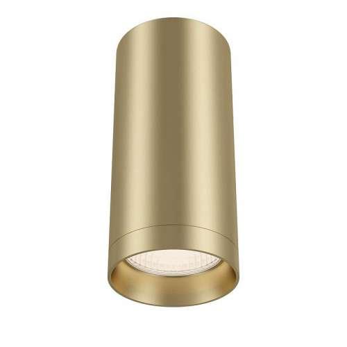 Потолочный светильник Maytoni Technical Alfa C010CL-01MG