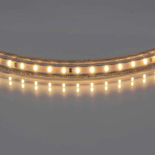 402032  Лента белого свечения Lightstar